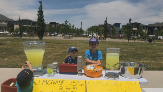 Boys' Charity Lemonade Stand Shut Down For Lack Of Permit...
