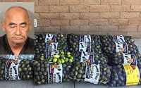 California man busted with 800 pounds of stolen lemons
